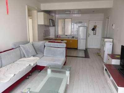 硅谷公寓精装2房买的a公寓住的舒适二手家具去哪里买图片